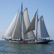 Ambulantní plavba
