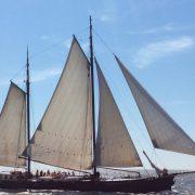 Jsina إليزابيث الإبحار جديدة