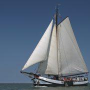 Larus varend