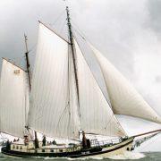 Rea Kliff vela