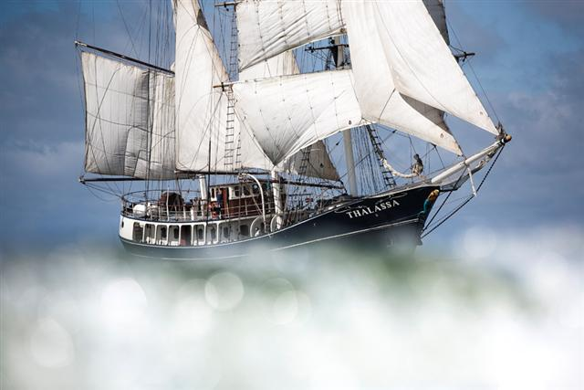 Sea sailing tall ships group trips sailing