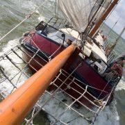 帆船_company11