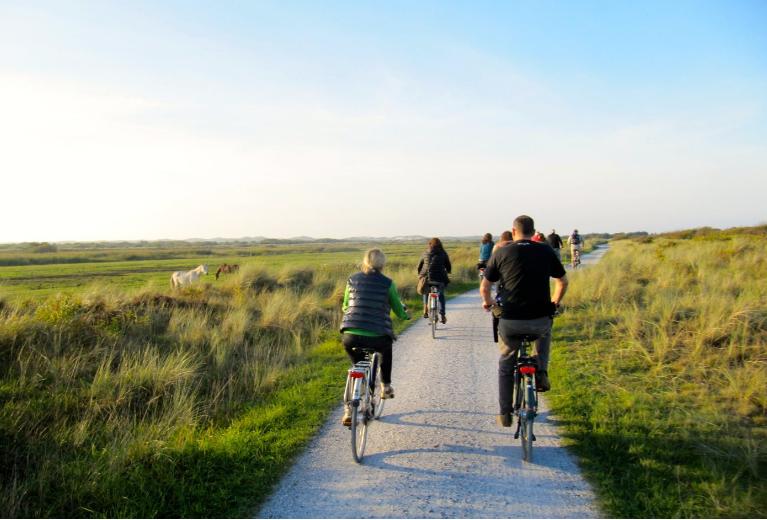 fiets vaar vakantie