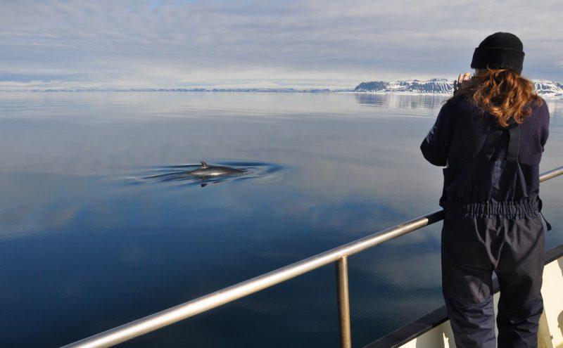 Foto Tour Spitsbergen Segeln Segeltörn