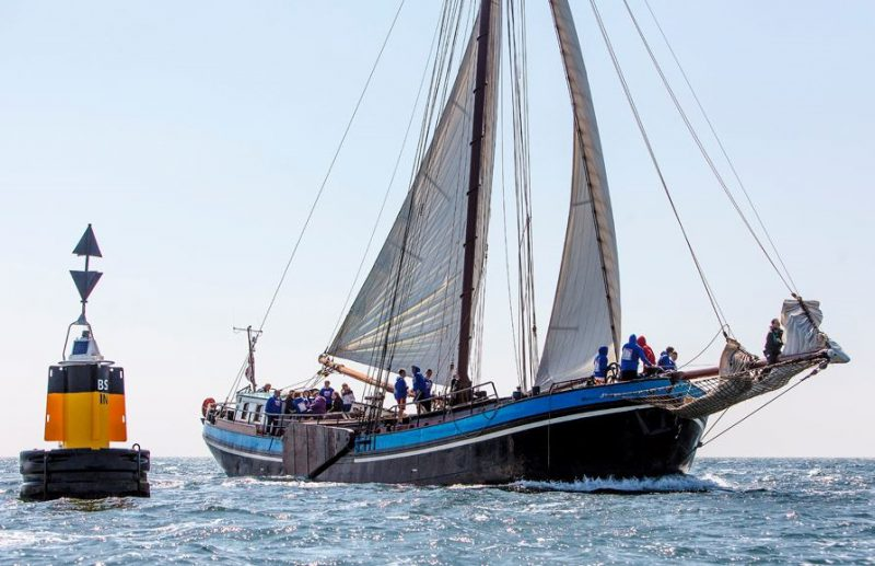 sejler på IJsselmeer