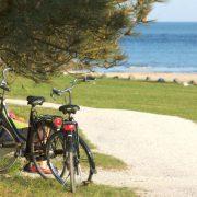bisiklet tatili
