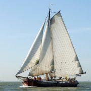 帆船_company12