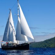 steady sailing trips scotland