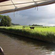 amore vici que navega a través de la columna central de la dreta a la Frisia 2