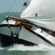 scallop_sailing