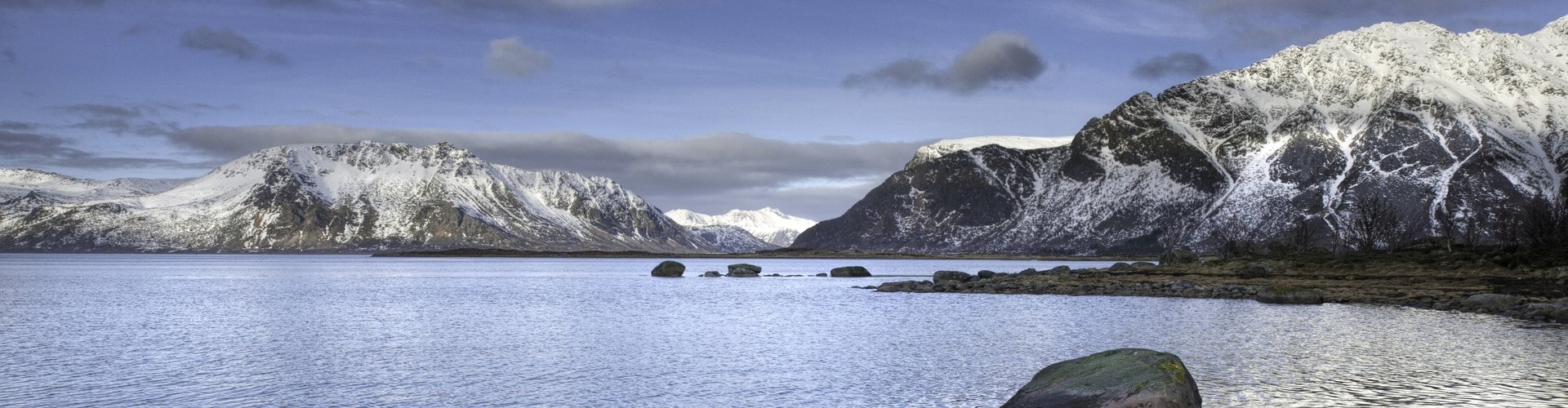 Observation des baleines en Norvège