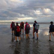 泥滩下降干燥航行瓦登海