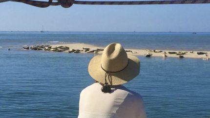 voile vacances mer des wadden