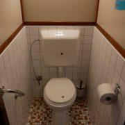 albertha wc