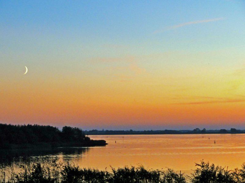 nachtvlinders spotten op Lauwersmeer