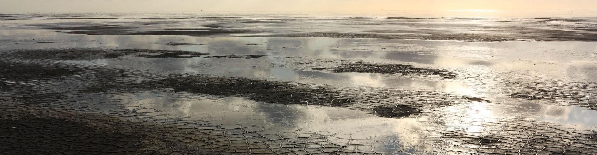 ساعات 24 على Wad: الإبحار والمشي الطيني